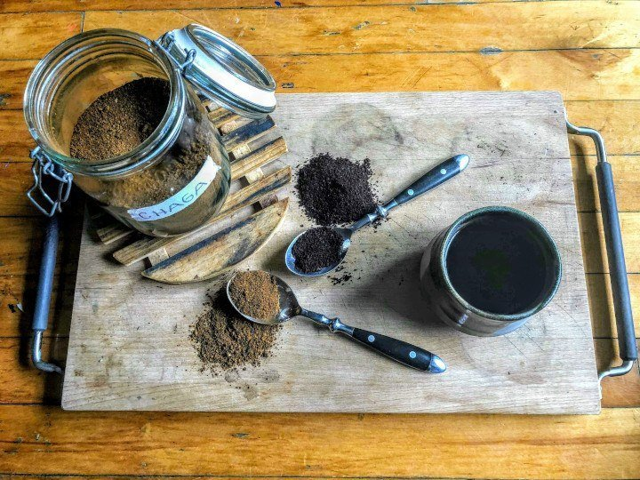 Healing Endometriosis Symptoms With Medicinal Mushrooms - Chaga